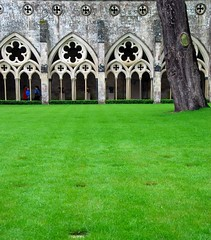 Salisbury Cathedral - A Beautiful Vision of Cloistered Green! (antonychammond) Tags: green church grass cathedral salisbury christianity cloisters salisburycathedral anglican rhizome earlyenglisharchitecture cathedralchurchoftheblessedvirginmary