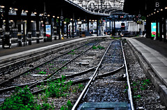 Paris gare de l'Est (La Pom ) Tags: de grande gare rail contraste sncf vitesse trian lest luminosit