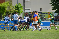 DSC_0383 (Philheckel) Tags: rugby tournoi