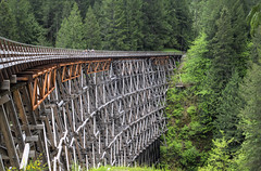 Kinsol Trestle (Fearon-Wood Photography) Tags: wood old trestle bridge trees people lake canada green architecture vancouver forest train river island wooden pacific outdoor relaxing railway landmark columbia canadian canyon historic trail national transportation restoration ravine british network recreation suspended framework trans cpr span height pathway coniferous preservation shawnigan oldgrowth koksilah