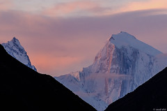 First Light at Golden Peak (saadalvi_13) Tags: pink pakistan mountain sunrise golden peak karakoram hunza karimabad spantik gilgit baltistan 7027m