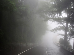 Ashinoko Lake 芦ノ湖 // Foggy Day (Ricardobtg) Tags: japan july olympus m 日本 20 hakone 43 omd 1250 箱根 m43 em5