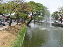 Chiang_Mai (40) (Sasha India) Tags: travel thailand asia chiangmai 旅行 泰國 여행 タイ سفر เชียงใหม่ путешествия ประเทศไทย תאילנד 태국 путешествие 清邁 ταξίδι мандри 치앙마이 таиланд تايلاند подорожі تایلند азия チエンマイ यात्रा பயண थाईलैंड чиангмай thailand2010 தாய்லாந்து การท่องเที่ยว ਯਾਤਰਾ לִנְסוֹעַ σιάμ ਸਿੰਗਾਪੋਰ ਜੇਜੂ