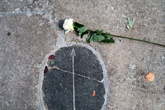 Time's Arrow (YIP2) Tags: oudekerk amsterdam oldchurch jobkoelewijn flower rose exhibition art