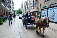 Horse and Cart (Bob Hawley) Tags: nikond7100 nikon24f28 summerholidays netherlands groningen holland transport animals horses carts wagons people traditional streetscenes