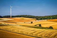 Individuals (Claudia G. Kukulka) Tags: windturbine windrad fields felder trees bume sky himmel clouds wolken landscape landschaft unteraltertheim karlebach germany deutschland