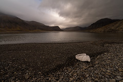 Lonelyness filled with stones (thomas.reissnecker) Tags: landscape lonlyness beach msexpedition arktis arctica polarcicle svalbard gadv ngc