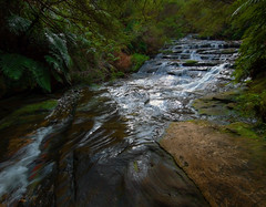 RGML6884 Leura Cascades (Rmonty119) Tags: canon5dlll 1124mmf4l lightroom travel leura bluemountains waterfall cascades outdoor bush water stream watercourse