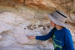 Children enjoy Dinosaur Bone (2) (BLMUtah) Tags: national public lands day npld2016 youth education dinosaurs paleontology outdoors explore utah moab blm bureauoflandmanagement grateful volunteers stewardship