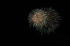 _MG_1236 (sdferrell) Tags: dmt fireworks ny