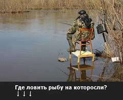 Где ловить рыбу на которосли? (ГoсРыбнaдзор) Tags: reflection the4elements me lago blue art agua sea