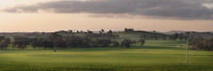 Fields_Of_Green (Beetwo77) Tags: nsw cowra central western slopes rural farm fields wheat sunset fuji xt1 90mm pano panorama reminder