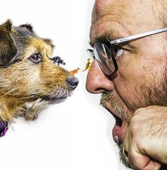 Honey I Shrunk The Dinosaurs (Stewart Black) Tags: dog dogs poppy wah werehere 80s film movie