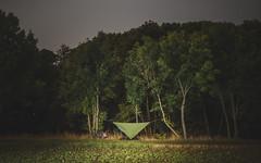 #9 // 18.09.2016 (SHAZAM BADAM) Tags: hammock tarp trees green cycling outdoor camping koga miyata weimar erfurt