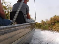 Ockavango Delta, Botswana - Sept 2016 (Keith.William.Rapley) Tags: ockavango ockavangodelta delta september2016 botswana rapley keithwilliamrapley boat water river