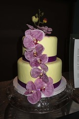 orchid cake (BarryFackler) Tags: mangocourt shoppingcenter kealakekua hawaii cake orchids gypseagelato petals blooms blossoms bakery sweet flowers bakedgoods layers flora cakeplate purple decorated icing food 2016 westhawaii bigisland hawaiicounty polynesia sandwichislands hawaiiisland tropical barronfackler island northkona hawaiianislands barryfackler kona