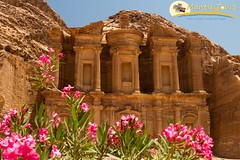 ONE DAY TOUR TO PETRA WITH OVERNIGHT IN EILAT (mantistours) Tags: jordan middleeast monastery petra treasury adventure ancient arabia archeology architecture bedouin bush camel canyon cart carved carving columns desert famous flowers historic historical holiday horse landmark monument mountain nabatean old oleander ruins scenic siq solitude stone tourism tourist travel trip view