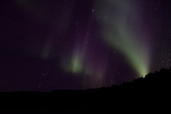 LR-1664 (einarmeme) Tags: norurljs ljs arctic green hafravatn iceland magnetosphere reykjavik astronomy atmosphere aurora background blue borealis cold effect europe galaxy ionosphere light magnetic natural nature night northenlight outdoor phenomenon polaris sightseeing sky solar space stars travel sland