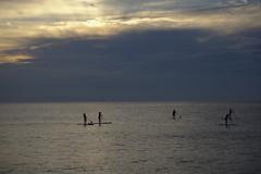 Paddleboarding (Rich Renomeron) Tags: olympusmzuiko1442mmf3556ez olympusomdem10 bethanybeach ocean paddleboards