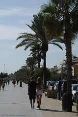 Sitges.Catalonia. (Natali Antonovich) Tags: portrait sitges catalonia spain lifestyle relaxation promenade couple pair heandshe seasideresort seashore seaside seaboard together lovestory romance palm tree walking walk