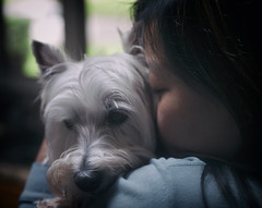 love (paulh192) Tags: dog canine love family hugs home michigan leica lowlight littledoglaughedstories