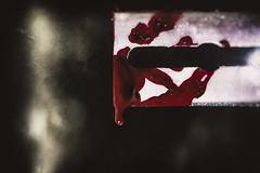 blood on the edge  (Luigi.glpy) Tags: world macromondays red 5200 macro edge digital colors art music light nikon blood dettagli industar61lz bokeh vintage