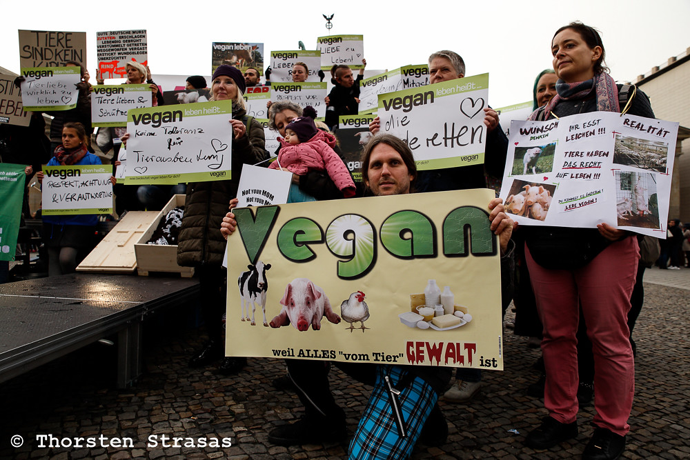 The world 39 s best photos of peta and vegan flickr hive mind for Stage cuisine vegan