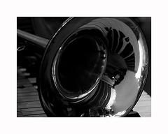 6-brass (Roberto Gramignoli) Tags: blackandwite bw brass ottoni strumentiafiato musica music jazz intruments musicintruments strumentimusicali fiati