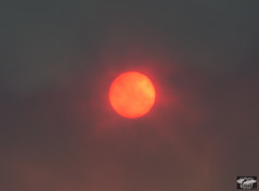 Fire! Red Sun in Orange Grey Smoke: Malibu / Ventura Wildfire May 2013 Stills & Video (45SURF Hero's Journey Mythology Goddesses) Tags: park santa sunset red wild anna orange cloud sun black slr yellow digital lens ed fire photography grey for model nikon purple state leo zoom photos smoke south country north surreal windy eerie canyon brush malibu burning pch sycamore ii cameras april blaze unreal nikkor camarillo winds epic ventura blocking vr afs wildfire carillo d800 clouded 70200mm f28g 2013 ventur 45surf d800e