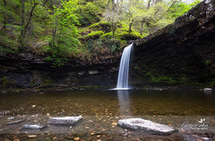 Sgwd-Gwladys-Stepping-Stones (Laurie Parker) Tags: water wales rocks breconbeacons waterfalls ferns waterfallcountry sgwdgwladys sgwddwilli