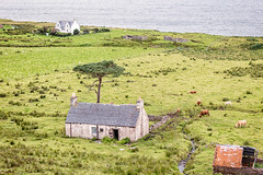 Old Croft House (AnnieMacD) Tags: applecross callakille croft highlandcow ruin scotland westerross