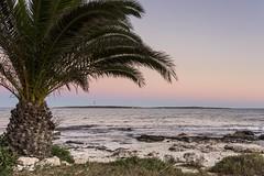201607_Urlaub_Menorca-4 (www.arternative-design.com) Tags: balearen balearios balerischeinseln ciutadella d810 espana insel leuchtturm mahon mao ma meer menorca nikon nikond810 palmen sommer sonne sonnenuntergang spain spanien strand sun urlaub beach lighthouse summer sunset