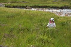 Abigail in heather (Team Tanenbaum) Tags: scotland august 2016 highlands trossachs