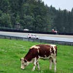 "Salzburgring 2016 <a style=""margin-left:10px; font-size:0.8em;"" href=""http://www.flickr.com/photos/90716636@N05/28868240220/"" target=""_blank"">@flickr</a>"
