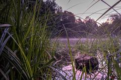 Nebel auf dem Albsee 3/3 (afw | ph[o]to) Tags: hdr deutschland nebel landschaft albtalstausee germany landscape fog schwarzwald stblasien blackforest verschiedenes sanktblasien badenwrttemberg de