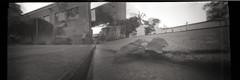 Pinhole Iris (edisonangeloni) Tags: pinhole pinholephotography stnop stenopeica fiatlux filme bw ilford sescpompeia