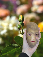 Talk To The Hand (swong95765) Tags: rose bud bokeh garden hand potato face head humor