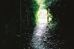 Edale 20/08/16 (lynnmariehall) Tags: edale moors moorland hills heather hilltops