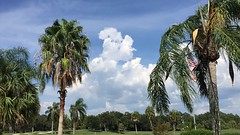 Cloud Dance (Jim Mullhaupt) Tags: clouds weather storm sky thunder wind rain wallpaper landscape bradenton florida manateecounty jimmullhaupt timelapse video iphone6 backyard cloudsstormssunsetssunrises weatherphotography