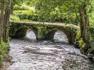 Puente romano-_5290196