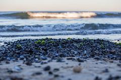 Evening at the Beach (3 of 33) (RDawson922) Tags: beach sun warm summer moon ocean sea night fishing waves color sky sunset light
