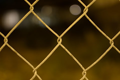 Barriers (maui photographer) Tags: barriers fence bokeh blur sharp color colors marques baclig mauiphotographer chicago empty lot surround bokehballs shallow depth field dof depthoffield