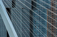 vertical city (Karl-Heinz Bitter) Tags: architektur brcke holland netherlands niederlande rotterdam bridge eramsusbridge erasmusbrcke vertical city architecture steal stahlseile hochhaus building gebude khbitter karlheinzbitter diagonale stripes