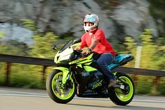 Honda CBR 1608203637w (gparet) Tags: bearmountain bridge road scenic overlook motorcycle motorcycles goattrail goatpath windingroad curves twisties outdoor vehicle