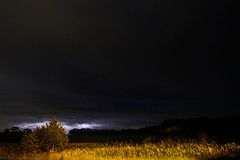 September 20 2016 Lightning (Dan's Storm Photos & Photography) Tags: thunderstorm thunderstorms thunderhead thunderstormbase thundershower rain rainshaft lightning lightningbolt lightningbolts skyscape skyscapes sky anvil anvils nature nightscape night nightsky nightlife nighttime nightphotography nightscapes nighscape