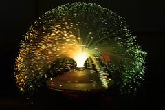 DSC_0428-22.jpg (TinaKav) Tags: 2016 greystonescameraclub workshop nikond7100 fibreoptic blackbackground light