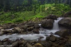 PEACE (PHOTOROTA) Tags: abid photorota pakistan flickr