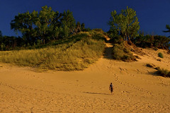 Dune Trekker Warren Dunes State Park Michigan 7398 (www.cemillerphotography.com) Tags: sand hills westernmichigan harborcountry sawyer marramgrass forest lakemichigan greatlakes wind waves water interdunal wetlands swamps pools ponds plants shoreline freshwater beach foredune linear parabolic transverse landscape sculpted bluff perched blowout backdune erosion bluestem cottonwood lagzone glacial moraine deposit
