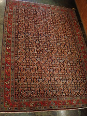 "EARLY 1900'S PERSIAN BIDJAR THROW RUG. • <a style=""font-size:0.8em;"" href=""http://www.flickr.com/photos/51721355@N02/29696938534/"" target=""_blank"">View on Flickr</a>"