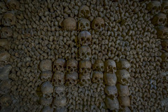 Morbid Tribute (NJHaupt) Tags: art expression sculpture bones skeletons bone skeleton skull skulls paris france underground cave catacombs tunnel macabre morbid dank dark death dead travel nikon d5300 wideangle tokina tribute
